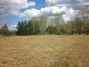 Nice plot of land with mineral spring located near spa resort town 30 km away from Montana,Bulgaria