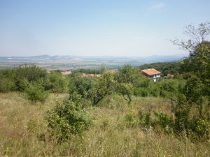 Two plots of land suitable for construction and investment