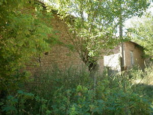 Two old rural houses with spacious plot of land near river