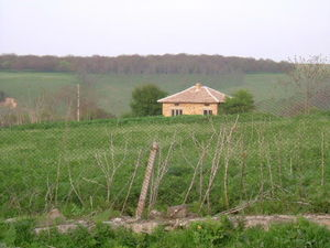 Small house with vast plot of land situated 70 km from sea