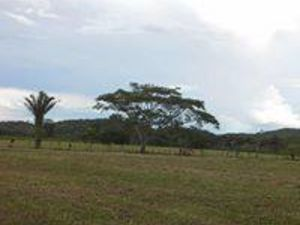 Large lots in San Ignacio, Cayo District, Belize