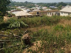 3Plots of Land for Sale, Ibadan Oyo State Nigeria