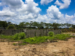 8 Acres Farm Hope Creek Stann Creek Valley Belize