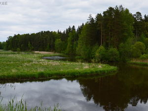 8,41 hectare buildable lot by the Võhandu river in Estonia
