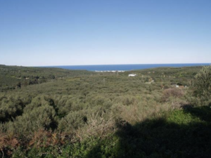 Crete Xamoudochori Building land