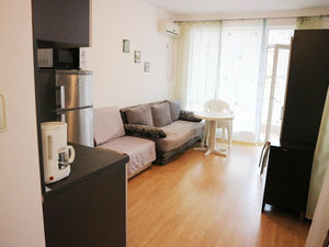 Big nicely furnished Studio with balcony in Sunny Day 6