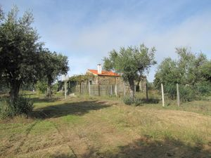 Established smallholding 1.5 hectares - €49,500 Ref:18/318
