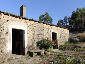 Quinta with 5 Hectares in Central Portugal