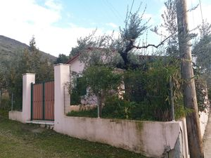 In 685m2 yard NewVilla Full Antique Furniture and appliances
