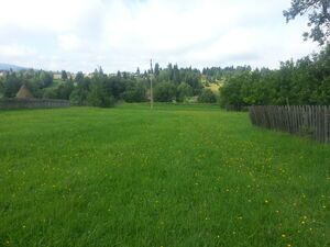 Land/house for sale in spectacular scenery of Carpathians
