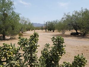 2.2 acre property in Tucson Arizona USA for sale by owner