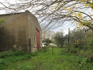Warehouse and land in Sicily - Giannone Cda Albano