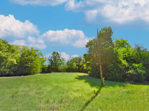 2 Lots in Lakeside community - 0 Deep Cove Dr Lot 69 & 70