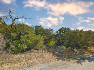 Build your home in this Resort type - Graford TX 76449