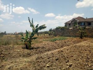 Prime land in Kiambu, Kenya.