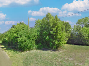 2 Lots in Lakeside community - TRINIDAD TX 75163