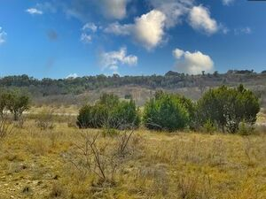 2 Perfect lots on the shore of Possum Kingdom Lake