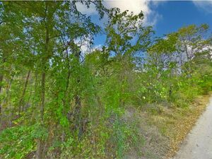 Lakeside Lots your Vacation Getaway -  Eustace TX 75124