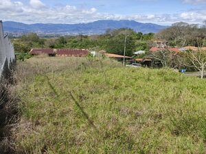 Sale of LARGE Lot for DREAMING IDEAS - Tierra Blanca