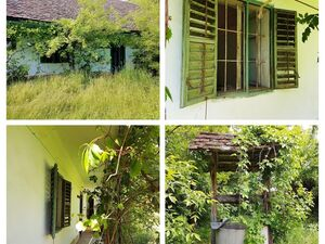 SWABIAN FARMHOUSE FOR SALE IN HUNGARY