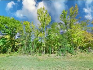 Stunning Residential Lot, Financing Made Easy - Murchison TX
