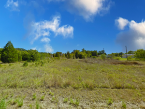 9 Lots for the Price of 1 - Trinidad TX 75163