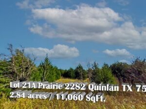 Undeveloped 2.84 Acre Property in Quinlan - TX 75474