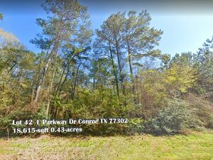 Lake Front Property in Conroe Texas - Conroe TX 77302