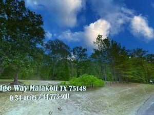 Country Hideaway in a Breathtaking Location - Malakoff TX