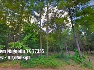 Country Feel w/ Easy Access 1.19 Acre Lot -Magnolia TX 77355