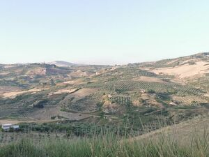 House and land in Sicily - Casa Tammuzzo Cda Petraro