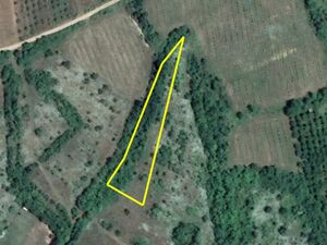 Agricultural land Stanchovitsa 2369m2. 4km from main town