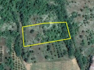 Agricultural land Stanchovitsa 2713m2. 4km from main town
