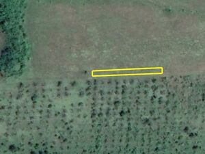 Agricultural land Umni Dol 346m2. 4km from main town