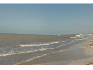 Land in front of the sea for investment