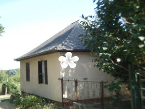 Residential house with vineyard in Hungary/Kaposvar for sale
