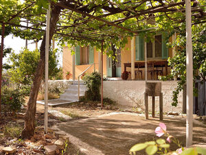 Traditional village house in the Peloponnese+ olive grove