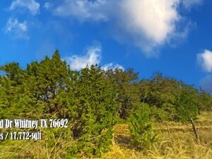 Investment Property Vacant Lot for sale in White Bluff