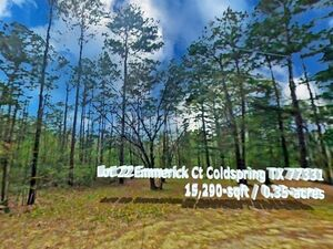 Hidden Gem, Unique and Private 0.35 Acre in Coldspring