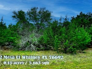 This White Bluff Property is a Gem - 1192 Mesa Ct Whitney TX