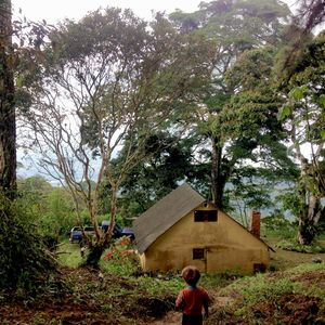 6 Hectare Coffee Farm W/ 2 Houses In Mountains Of Venezuela